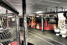 Cage Fighting South Africa